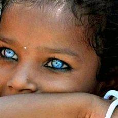 Das menschliche Auge - Fascination im Detail