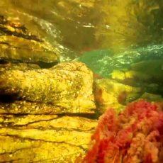 Die schönsten Flüsse