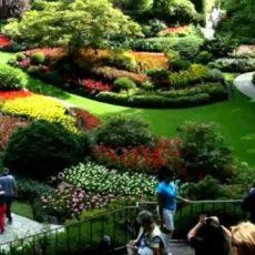 Bezaubernde Gärten